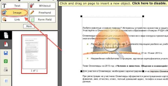 наложить на документ PDF водяной знак или фирменный логотип
