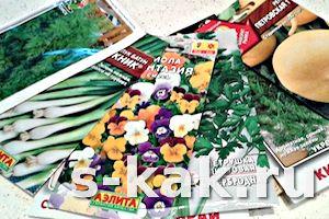 Как готовить семена к весеннему посеву