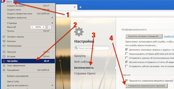 Посмотреть сохраненные пароли Опера (браузер Opera)