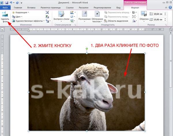 Как удалить фон с фотографии в Word. Шаг 1.