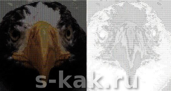 фото из инстаграм буквами ASCII картинкой без конвертера