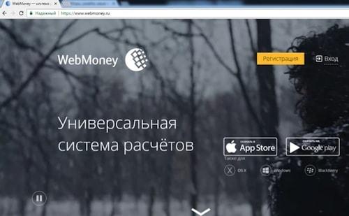 Зарегистрировать кошелек WebMoney. Фото 2