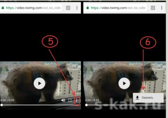 Сохранить видео ролик из Twitter